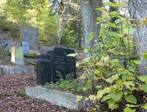 Grabsteine, umgeben von Bäumen und gefallenem Laub